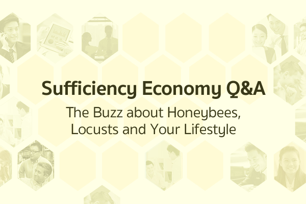 Sufficiency Economy Q&A